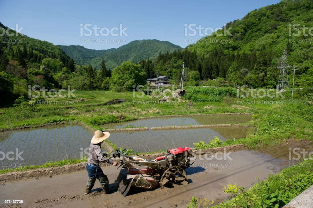 farmer stock photo