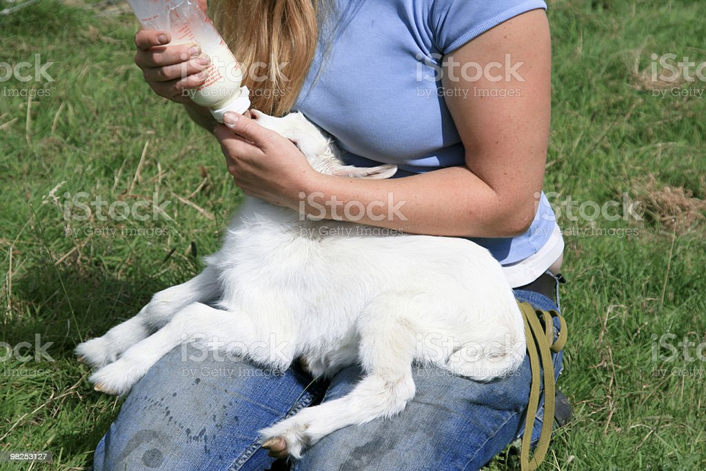 Farmer royalty-free stock photo