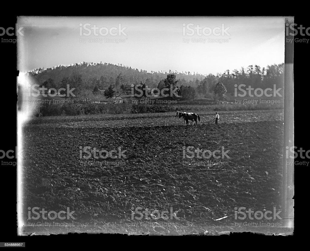 Farmer Plowing a Field, Circa 1890 stock photo