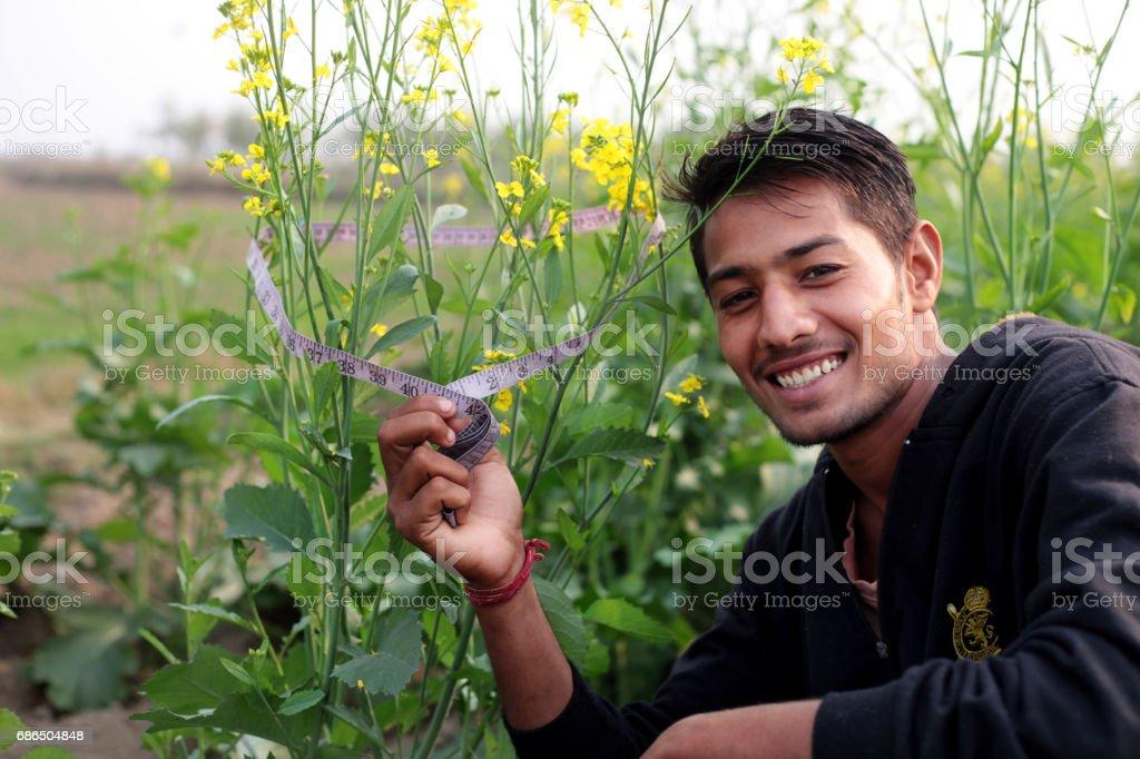 Boer portret op het gebied van mosterd gewas royalty free stockfoto