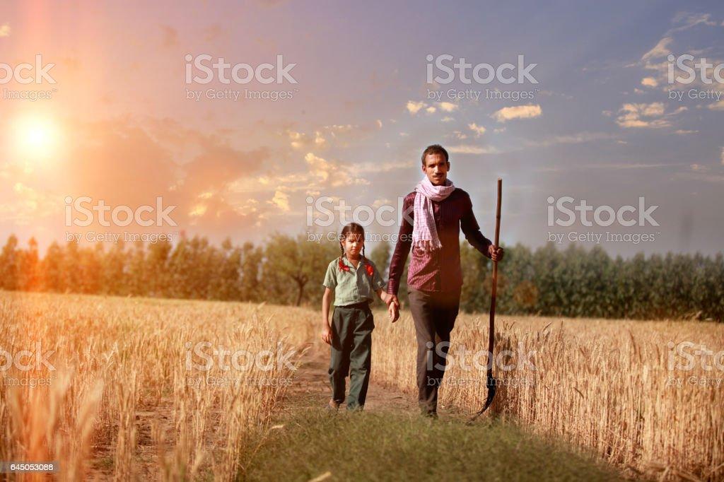 Farmer portrait in the wheat field stock photo