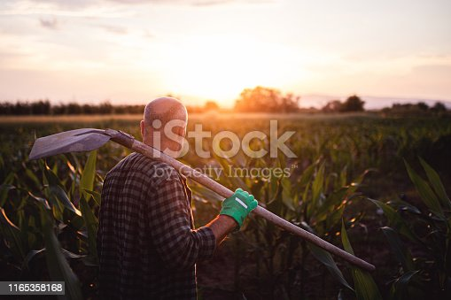 621898406istockphoto Farmer saying goodbyes to his farm for the day 1165358168