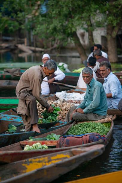 Farmer selling vegetables on floating market, Srinagar, Kashmir, India stock photo