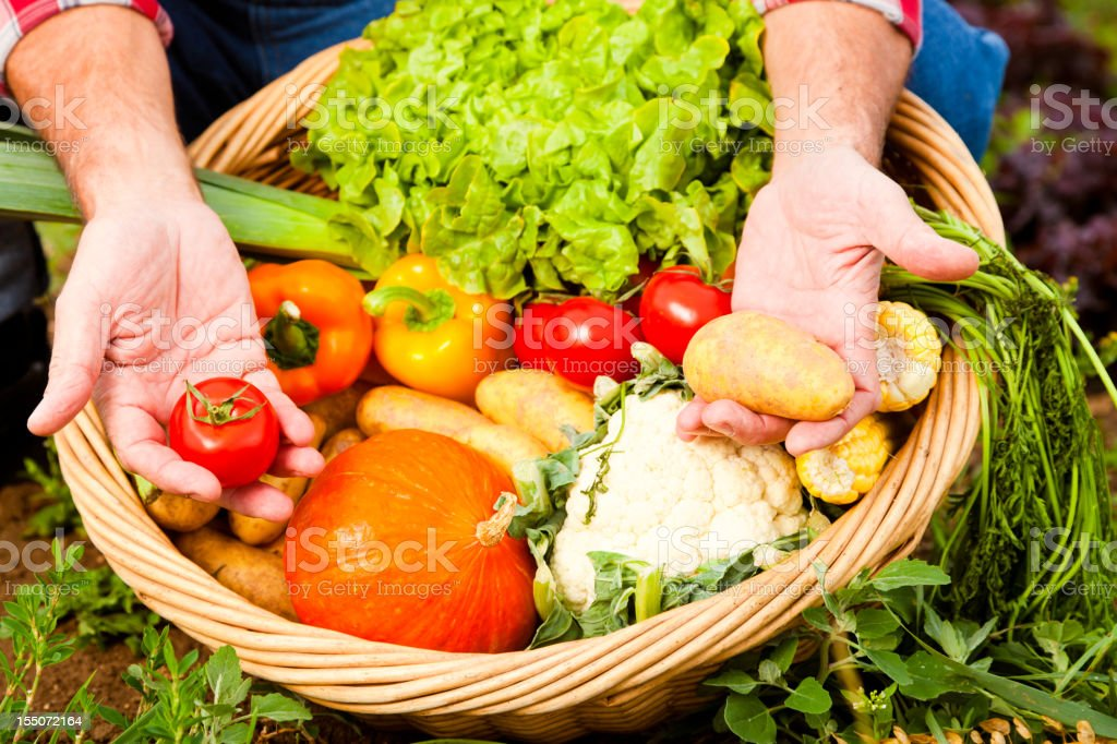 farmer showing his produce royalty-free stock photo