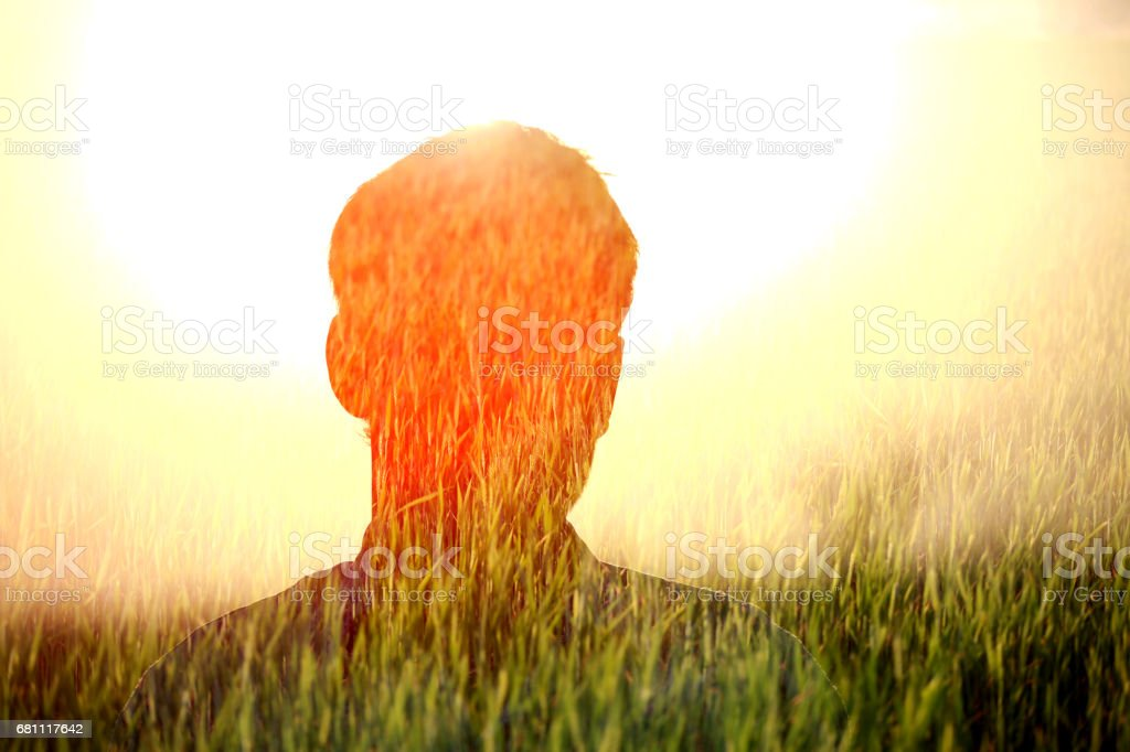 Farmer silhouette in the field royalty-free stock photo