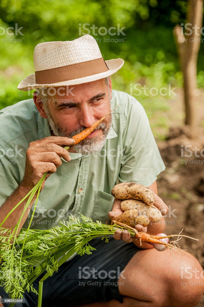 Farmer Smelling Carrot royalty-free stock photo