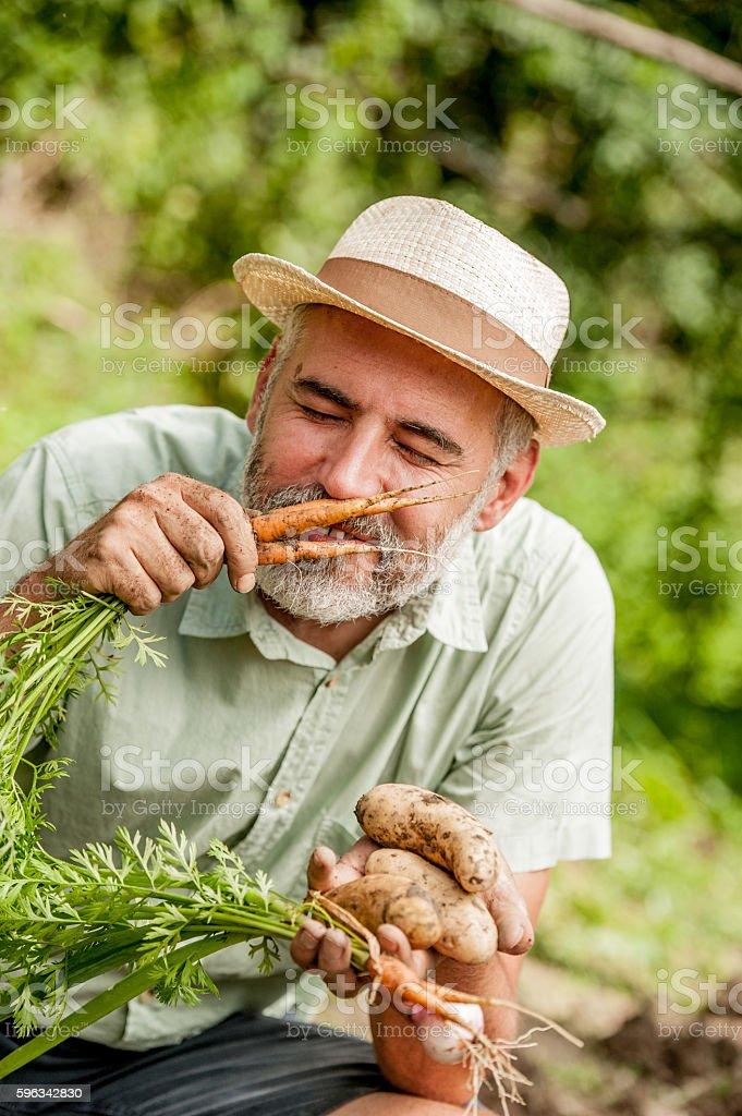 Farmer Smelling Carrot Lizenzfreies stock-foto