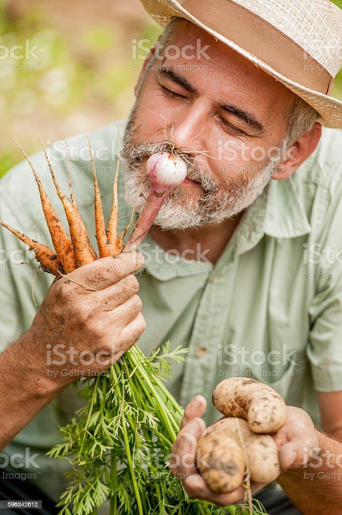 Farmer Smelling Home Grown Onion Lizenzfreies stock-foto