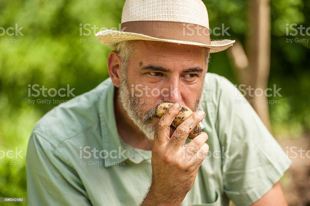 Farmer Smelling Potatoe Lizenzfreies stock-foto