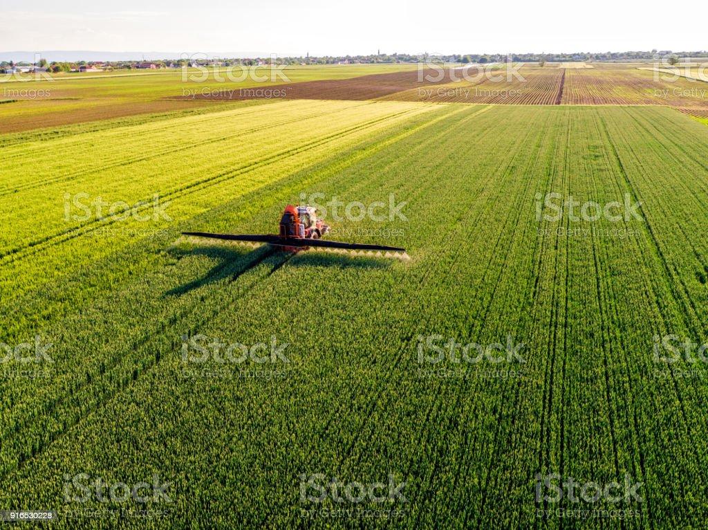 Granjero pulverización campo de trigo verde - foto de stock