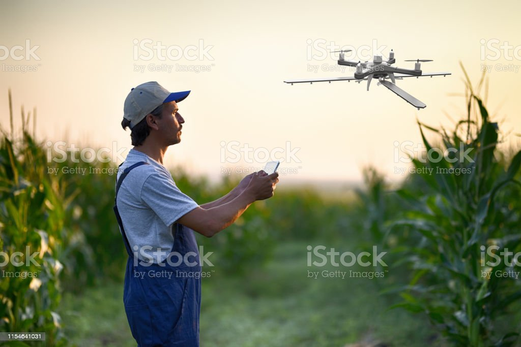 Farmer Spraying His Crops Using A Drone Stock Photo