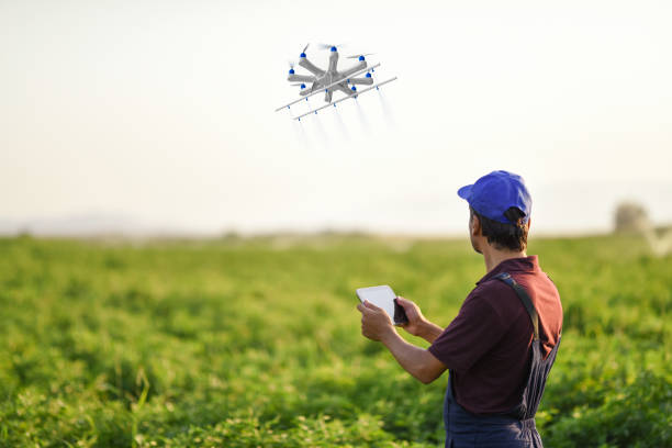 Farmer spraying his crops using a drone Farmer spraying his crops using a drone drone point of view stock pictures, royalty-free photos & images