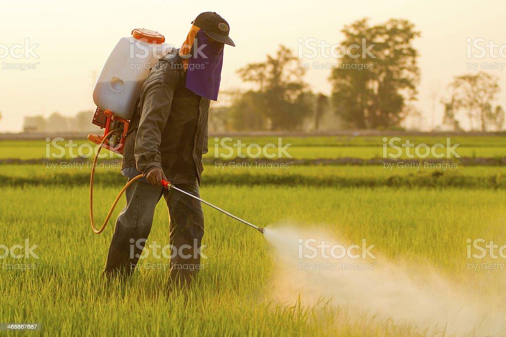Agricultor jogando pesticide - foto de acervo
