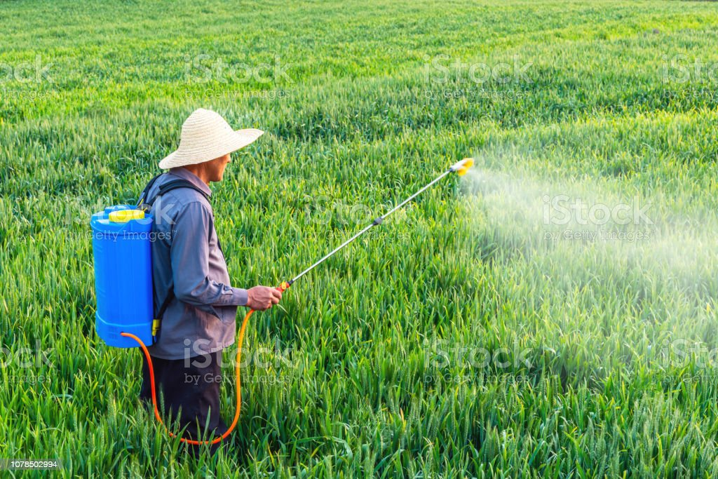 Farmer spraying pesticides in the fields Farmer spraying pesticides in the fields Agricultural Equipment Stock Photo