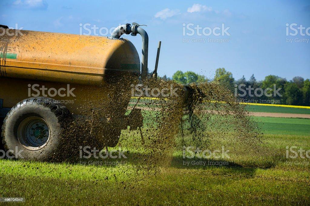 farmer propagación de líquido de estiércol - foto de stock