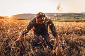 Farmer standing in a golden wheat field. Harvesting, organic farming concept