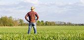 istock Farmer standing in field 1094813366