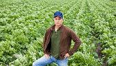 istock Farmer standing in field 170583556