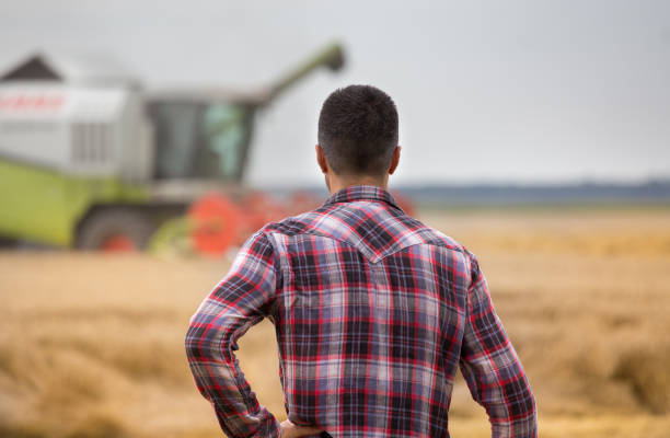 Bauer auf Feld bei der Ernte stehen – Foto