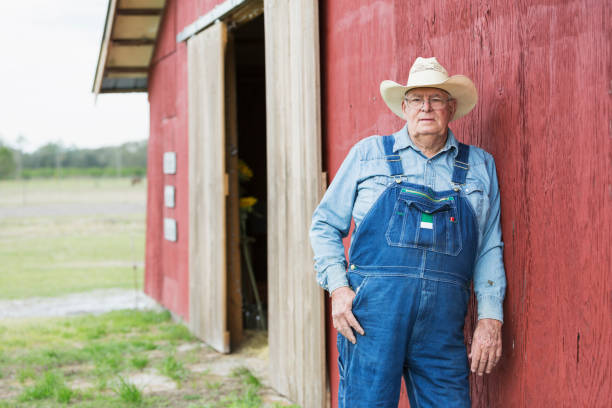 Farmer standing outside barn A farmer standing outdoors, leaning against the wooden wall of a red barn, wearing overalls and a cowboy hat. He is standing with a serious expression on his face, looking toward the camera. He is a senior man in his late 60s. bib overalls stock pictures, royalty-free photos & images