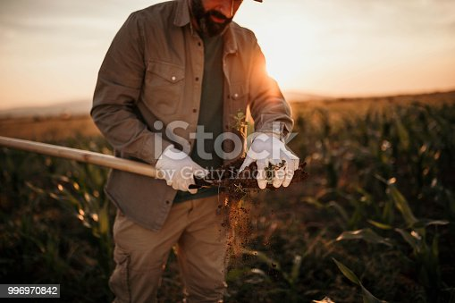 Photo of farmer takes a sample of soil