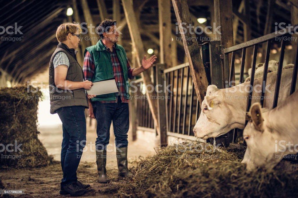Bauer im Gespräch mit Inspektor in einer Scheune – Foto