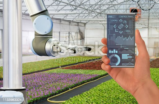 1127437312istockphoto Farmer uses a futuristic transparent smartphone to control robot in a modern greenhouse 1133983324
