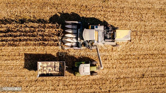 1072634078 istock photo Farmer using combine, tractor and machinery for autumn harvest 1075550824