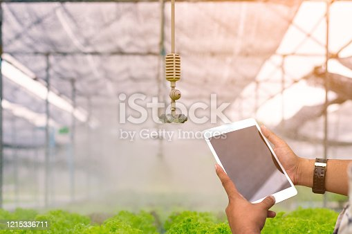 1047941544 istock photo Farmer using digital tablet computer in cultivated soybean crops field, modern technology application in agricultural growing activity. 1215336711