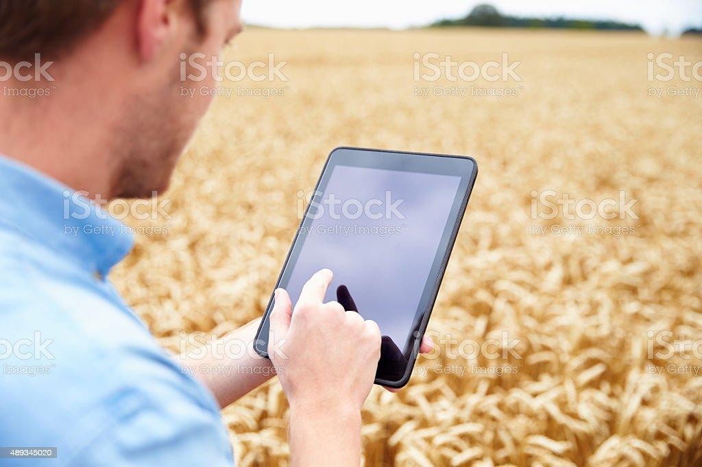 Granja usando tableta Digital en campo de trigo - foto de stock