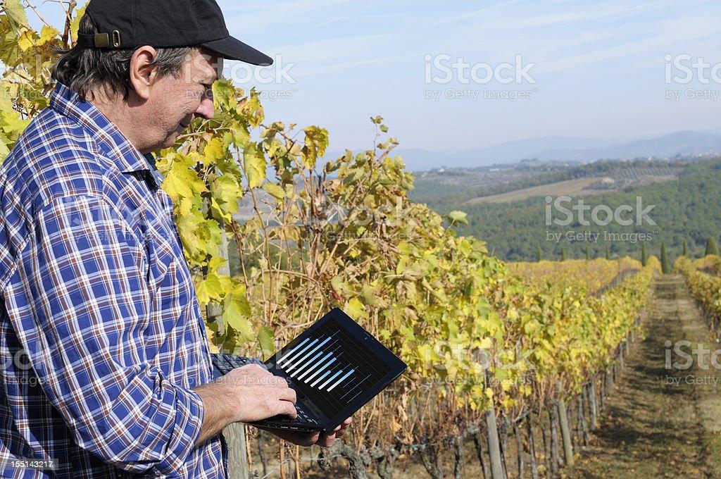 Farmer Using PC in his Vineyard royalty-free stock photo