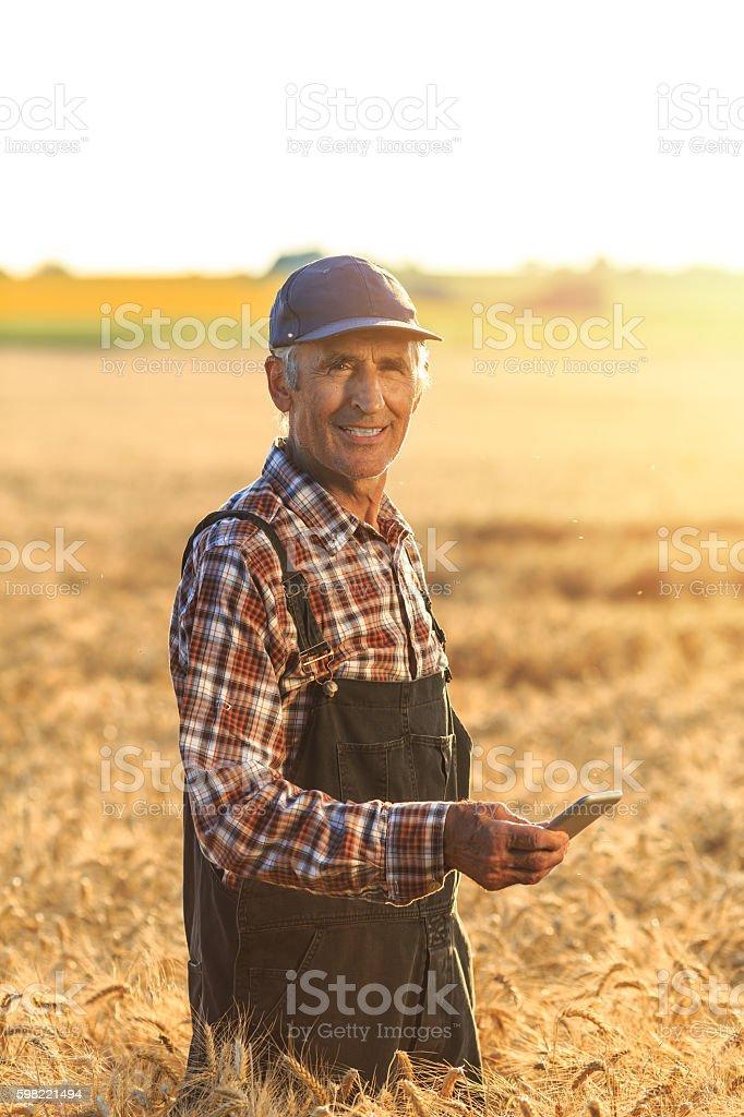Farmer using smart phone on field foto royalty-free