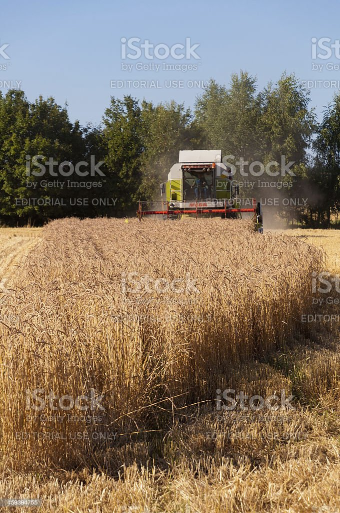 farmer with a combine harvester stock photo