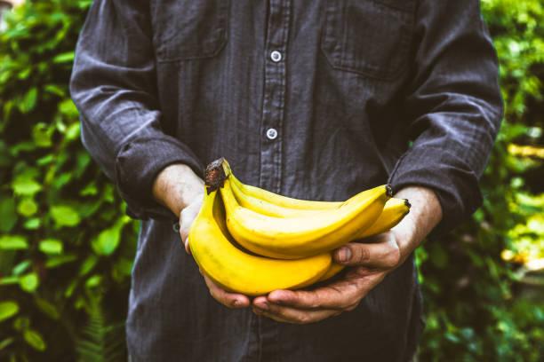 Farmer with bananas stock photo