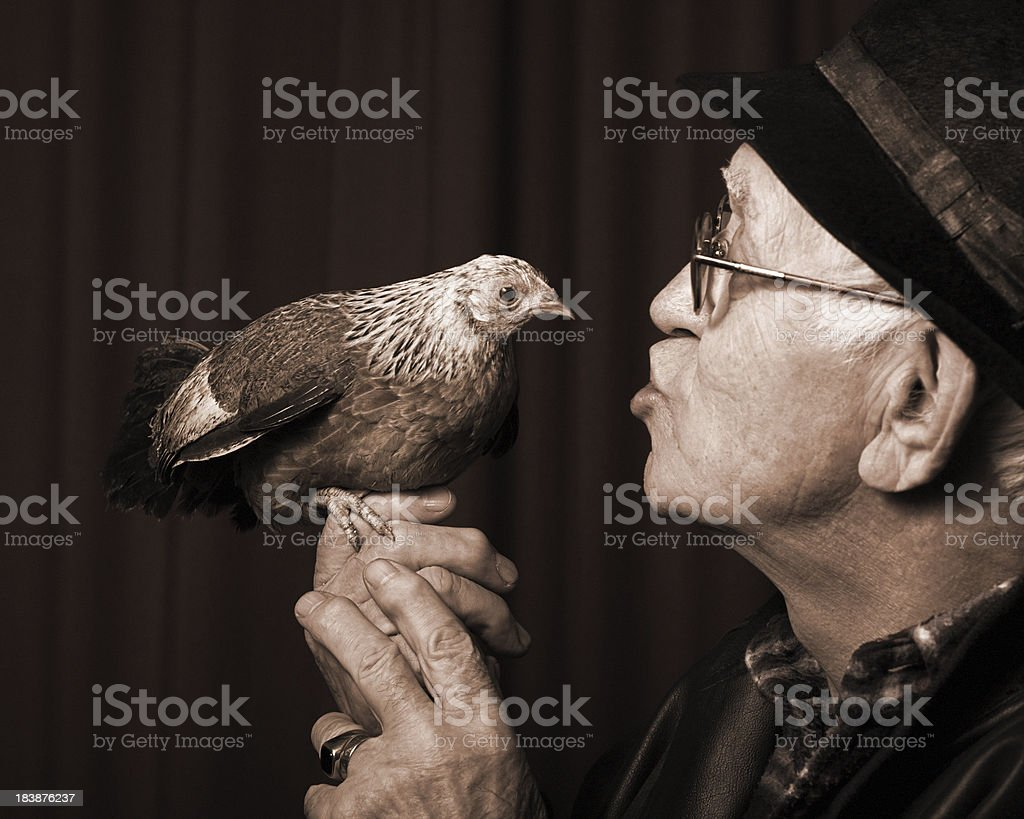 Farmer with Chicken stock photo