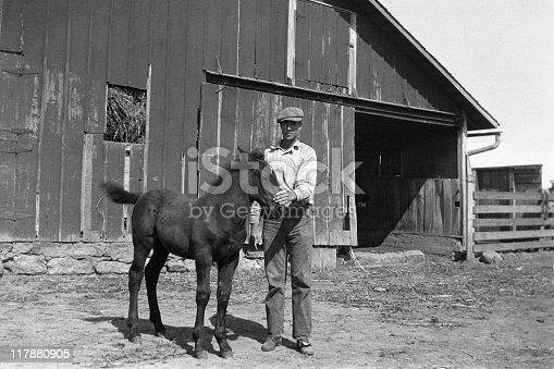 Farmer with draft horse foal. 1935. Wellman, Iowa, USA. Scanned film with grain.