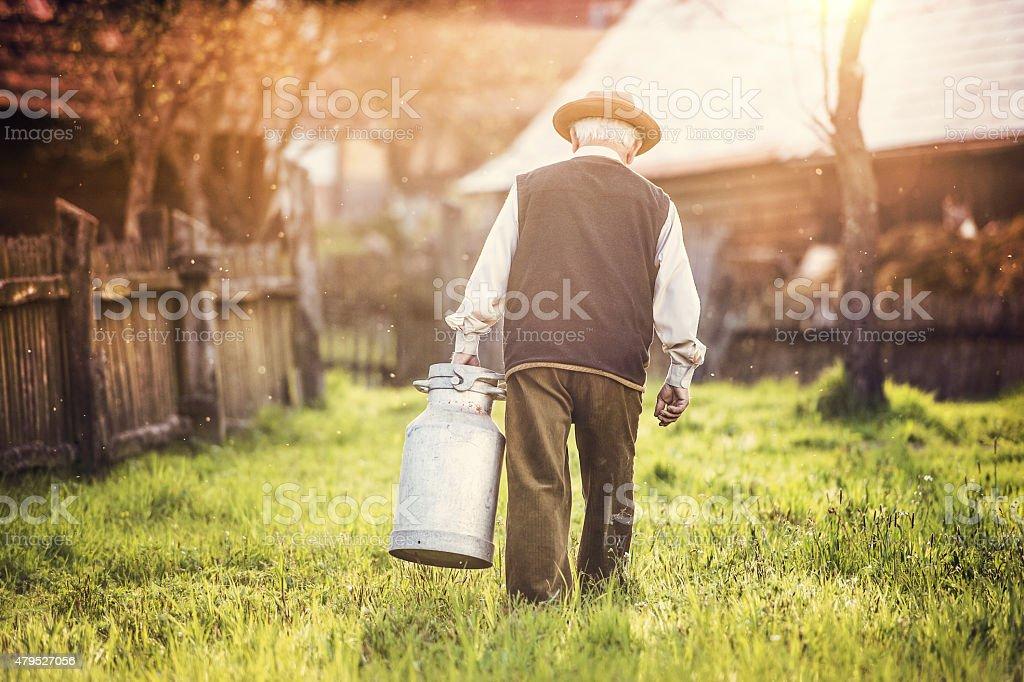 Farmer with milk kettle stock photo