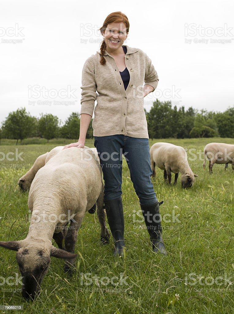Un agriculteur avec mouton - Photo
