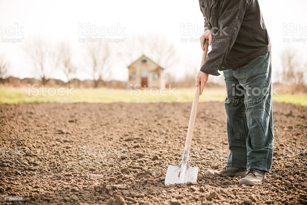 farmer with shovel stock photo