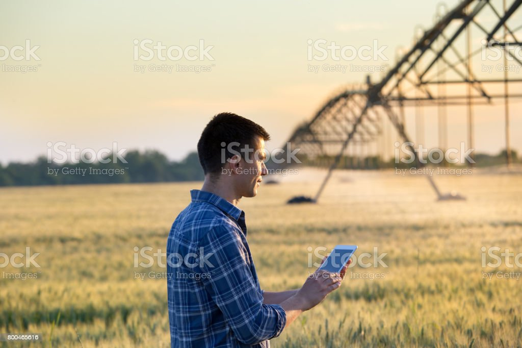 Farmer with tablet in field stock photo