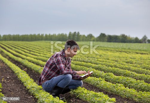 Young handsome farmer with tablet squatting in soybean field in spring. Agribusiness and innovation concept