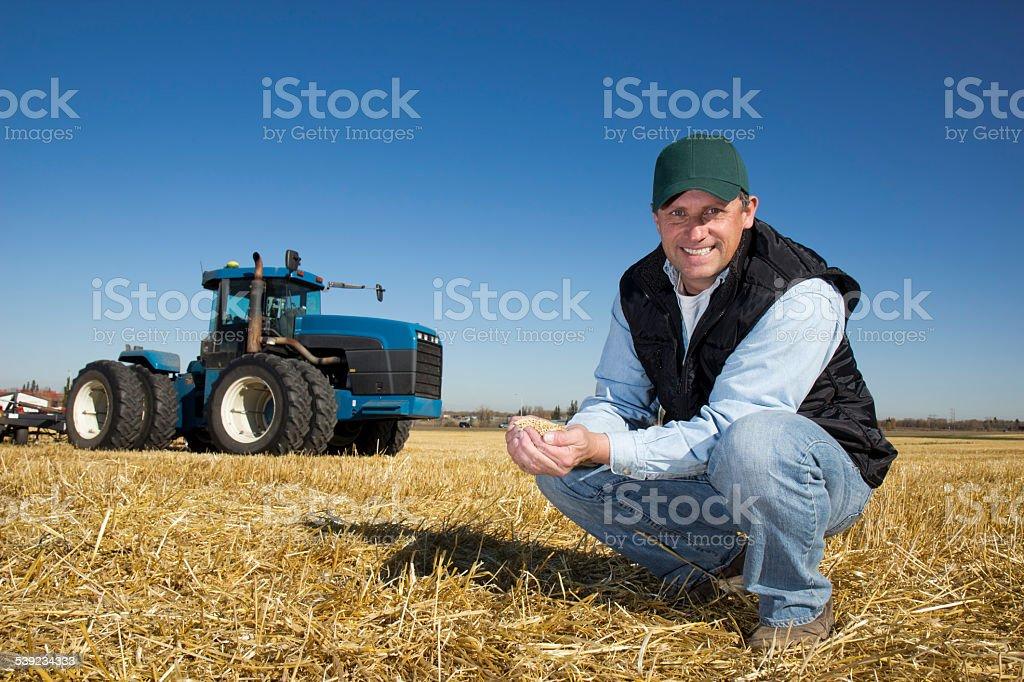 Landwirt mit Weizen auf der Farm mit einem Traktor – Foto