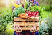 istock Farmer woman holding wooden box full of fresh raw vegetables. 1222581489