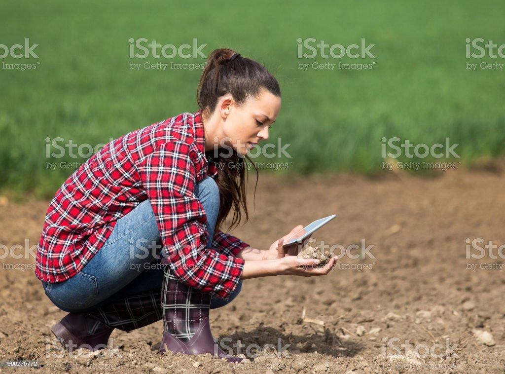 Frau Bauer mit Tablet-PC im Feld – Foto