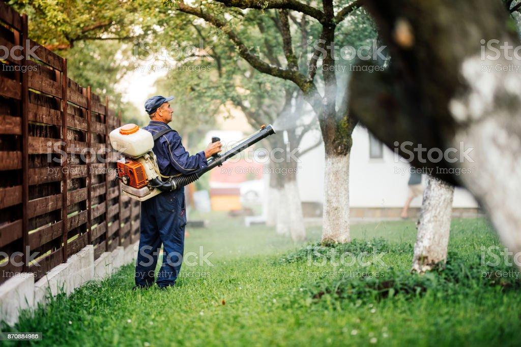Trabalhador de agricultor pulveriza tratamento insecticida no jardim de frutas - foto de acervo