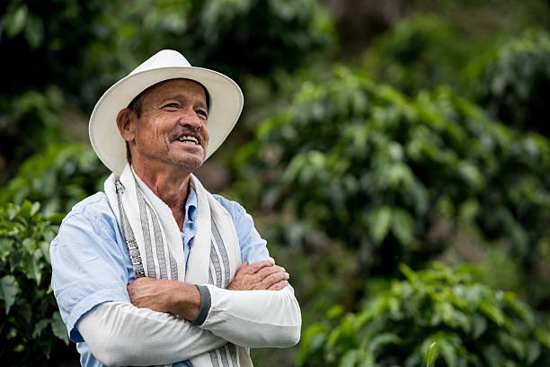 farmer working at a coffee farm - coffee farmer foto e immagini stock