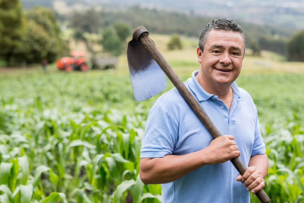 Farmer working at the field with a mattock Farmer working at the field with a mattock - Agriculture concepts mattock stock pictures, royalty-free photos & images