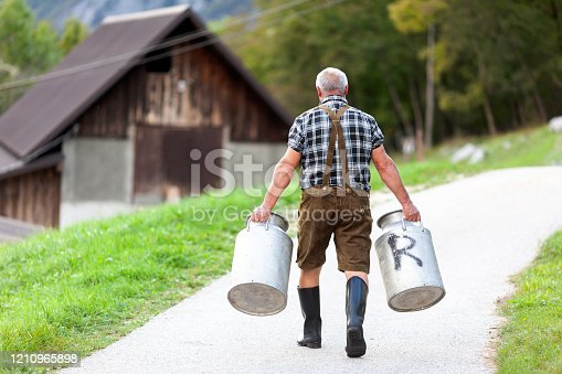 Farmer Working on Dairy Farm in Old-Fashioned Clothing, Carrying Milk in Barrels - Stock Photo