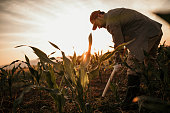 Photo of farmer with shovel on his filed