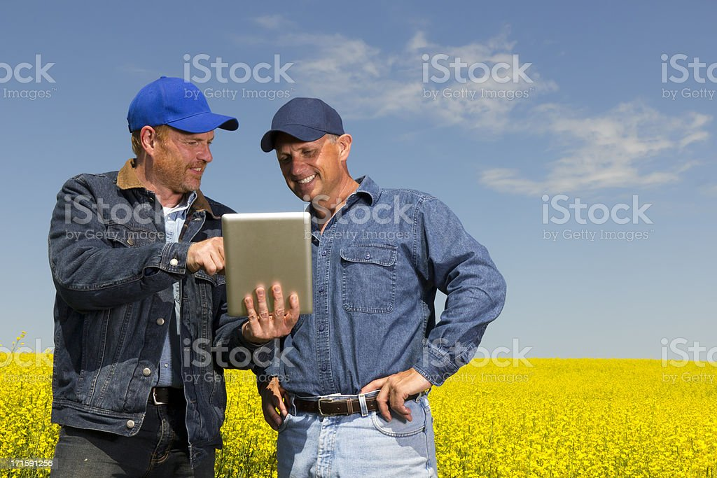 Farmers and Tablet PC royalty-free stock photo